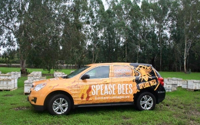 Spease Bees Honey company
