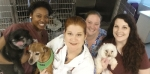 Veterinarian-Caring for your pets like YOU do!